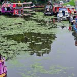 Boats on the Union Canal