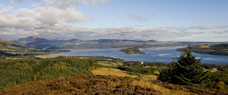 Loch Lomond from Gouk Hill